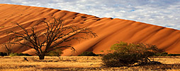 Namibia Rundreisen & Safaris
