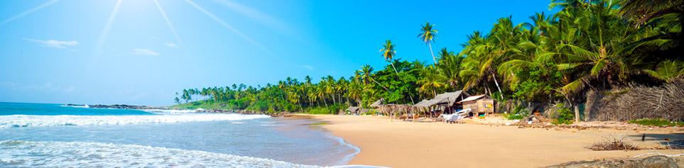 Sri Lanka Ferien Schweizer Reisebüro